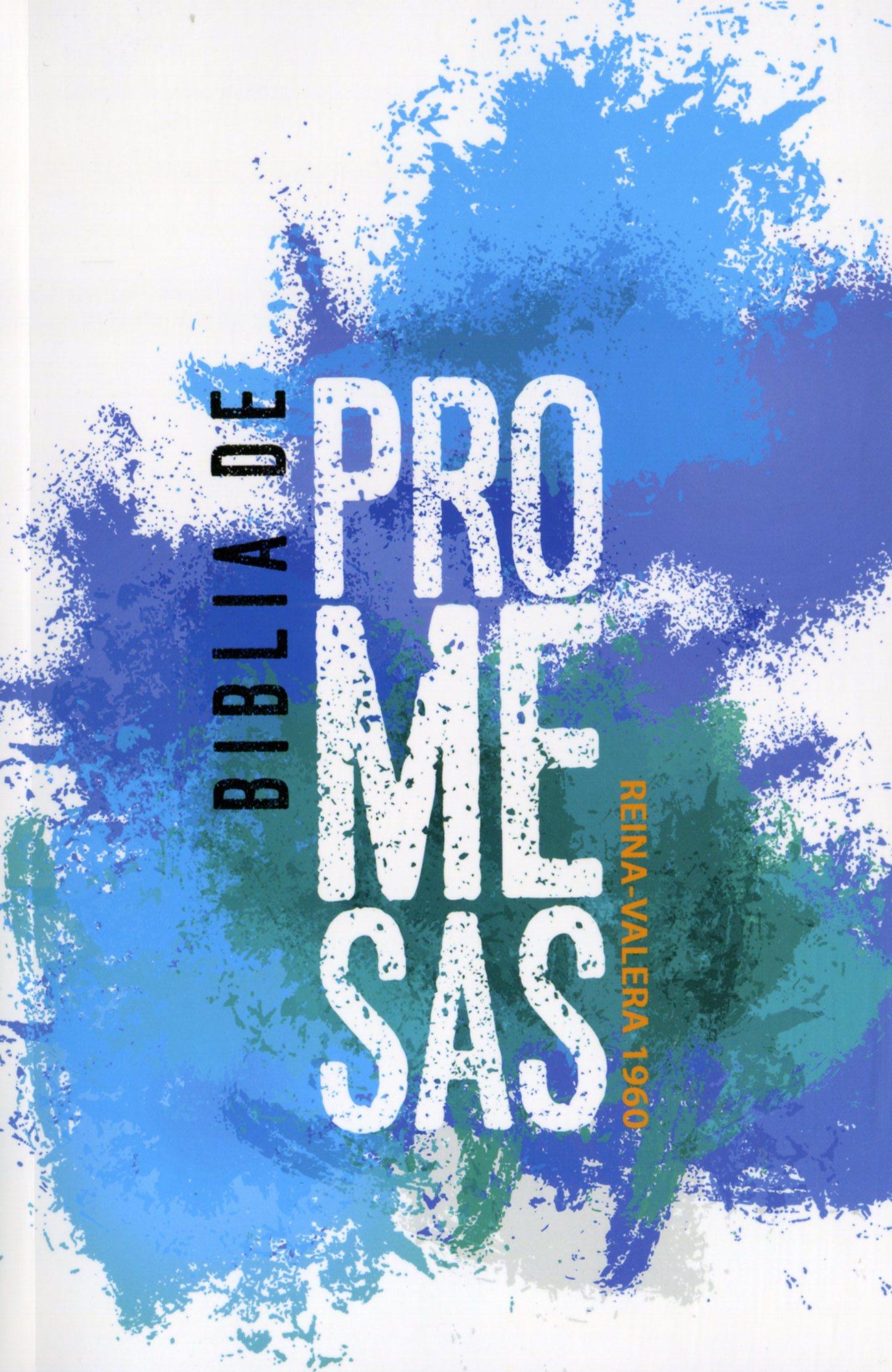 Biblia Promesas Economica Jovenes