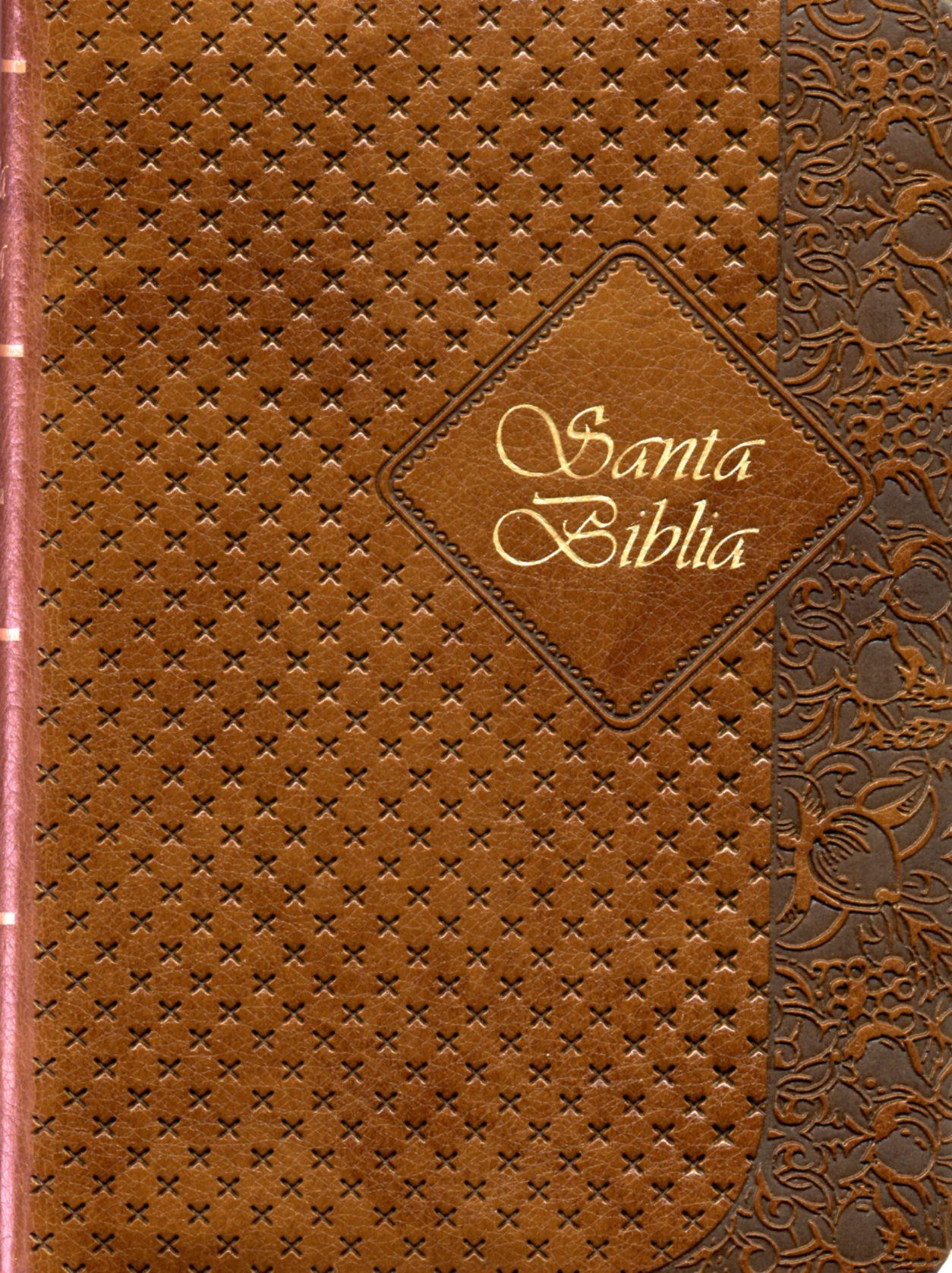 Biblia RVR25cTI Cafe Canto Dorado