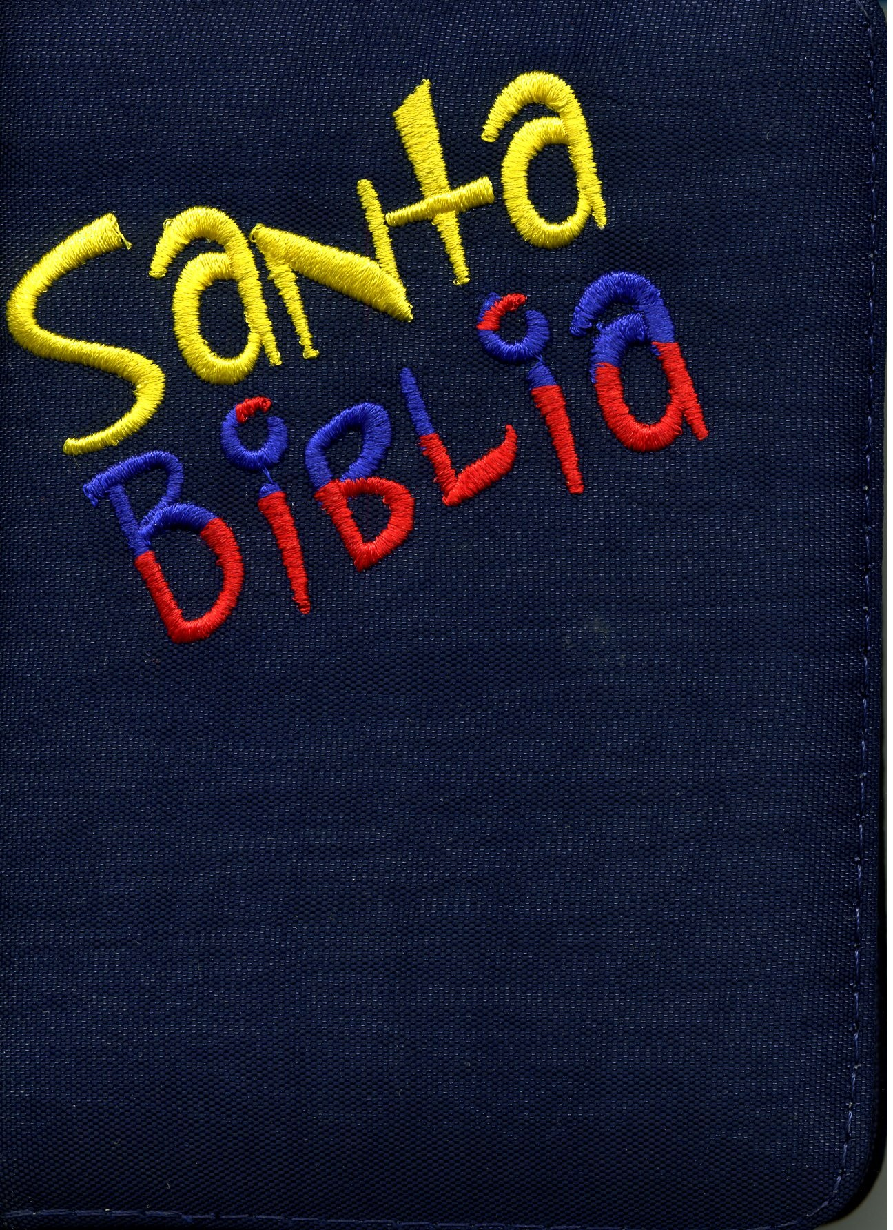 Biblia RVR60 tamaño 024CZLGa Colombianita