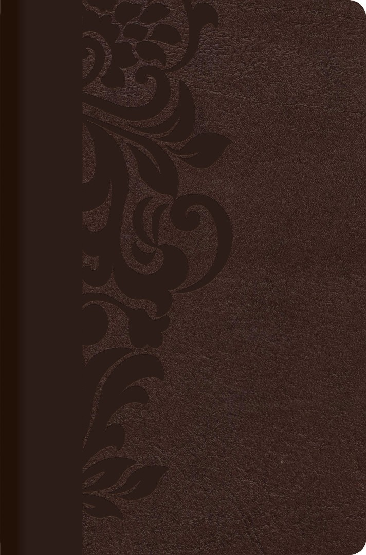 Biblia De Estudio Para Mujer - Chocolate