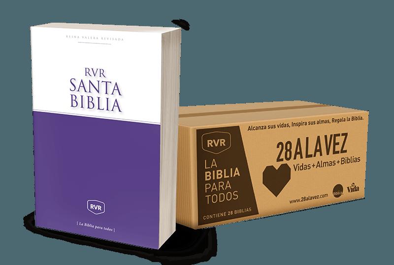 Caja De Biblias Misionera 28 A La Vez