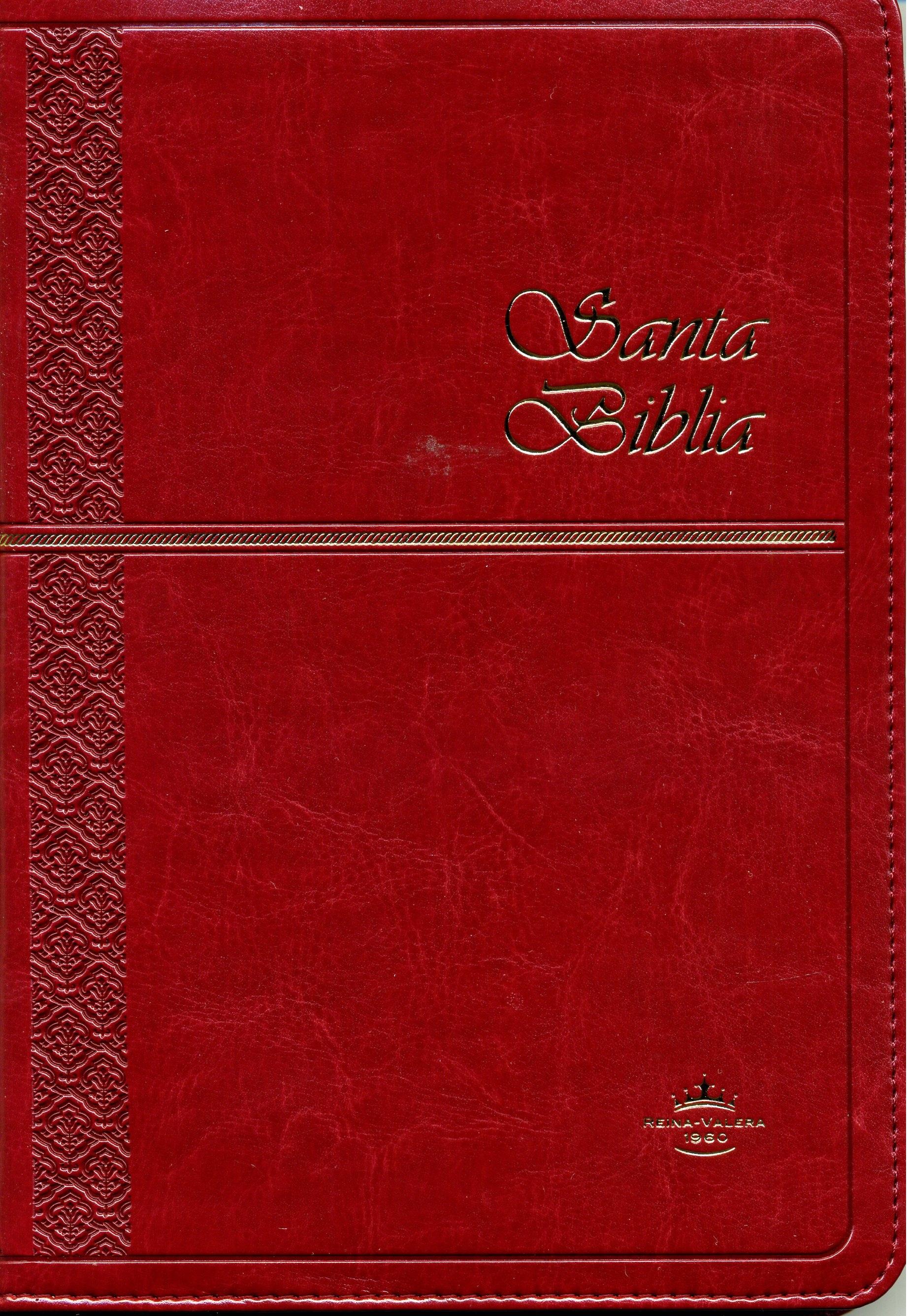 Biblia RVR60 Tamaño 65CXZTI