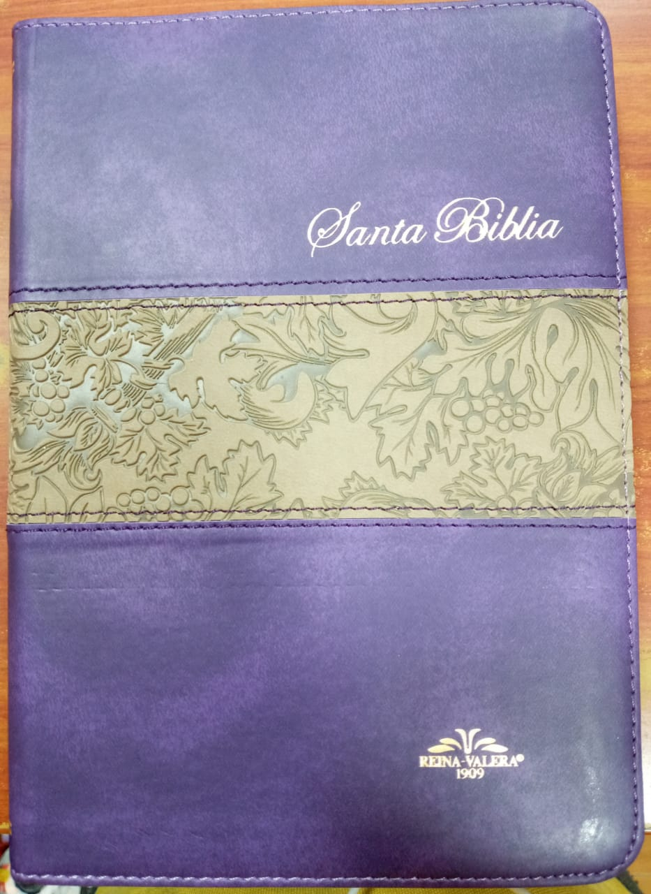 Biblia VR055 Grape Purpura