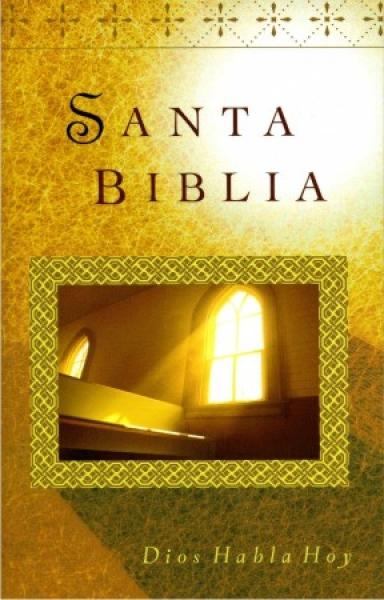 Biblia santa biblia Rustica